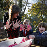 Early Learning Childcare in Scotland Discussion Forum and Document Hub