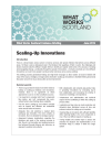 Briefing Paper - Scaling-Up Innovations